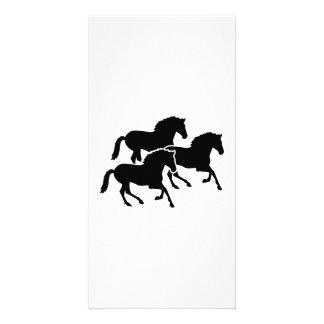 Running black horses photo card