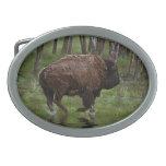 Running Buffalo & Forest, Bison-lover's Design Belt Buckle
