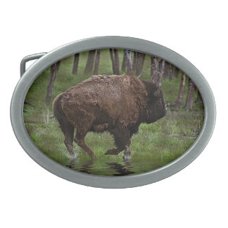 Running Buffalo & Forest, Bison-lover's Design Oval Belt Buckle