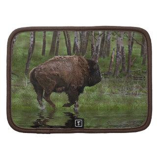 Running Buffalo & Forest, Bison-lover's Design Organizer