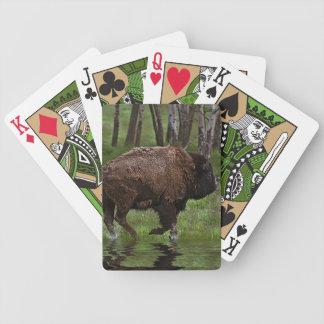 Running Buffalo & Forest, Bison-lover's Design Deck Of Cards