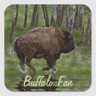 Running Buffalo & Forest, Bison-lover's Design Square Sticker
