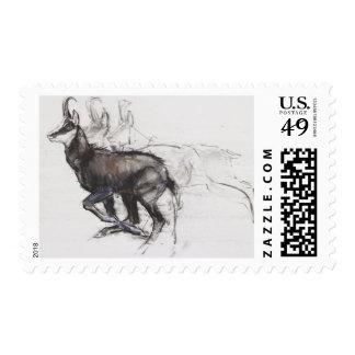 Running Chamois Stamp