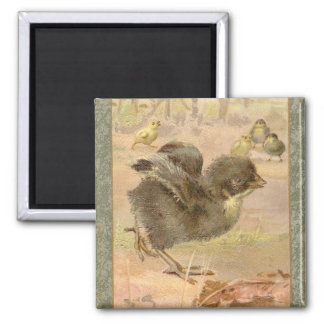 Running Chick Vintage Easter Card 2 Inch Square Magnet