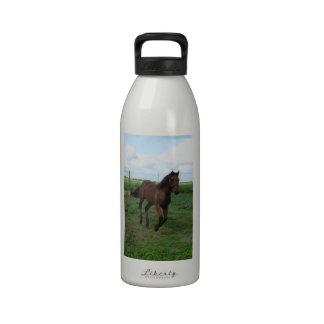 Running Colt Water Bottles