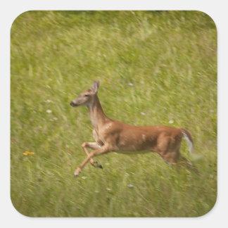Running Deer Sticker