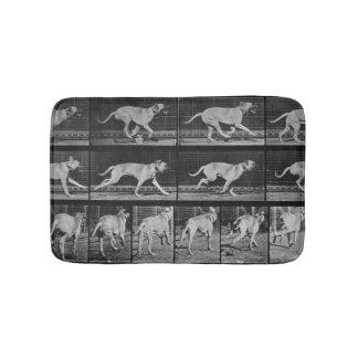 Running Dog, plate 707 from 'Animal Locomotion', 1 Bathroom Mat