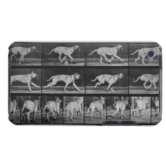 Running Dog, plate 707 from 'Animal Locomotion', 1 iPod Touch Cases
