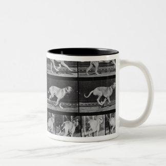 Running Dog, plate 707 from 'Animal Locomotion', 1 Two-Tone Coffee Mug