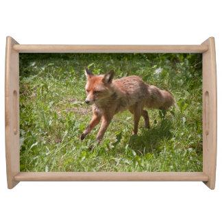 Running fox serving tray