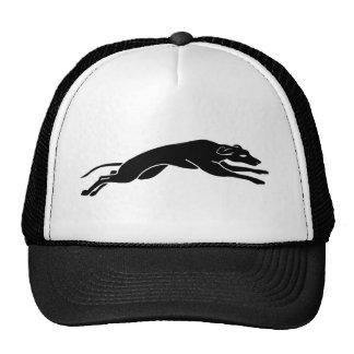 running greyhound trucker hat