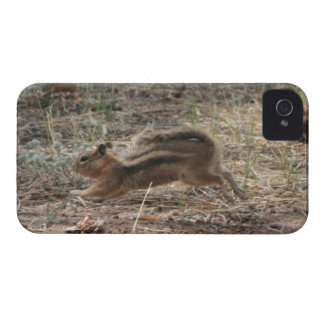 Running Ground Squirrel iPhone 4 Cover
