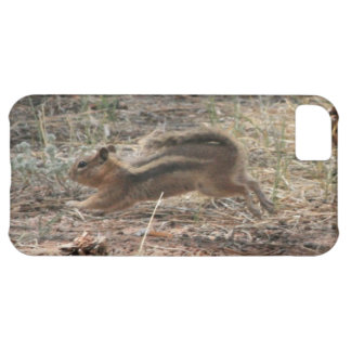 Running Ground Squirrel iPhone 5C Cover