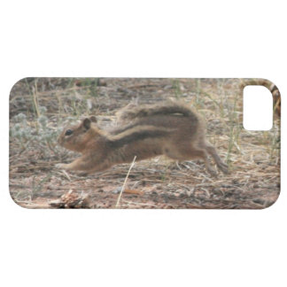 Running Ground Squirrel iPhone SE/5/5s Case