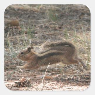 Running Ground Squirrel Sticker