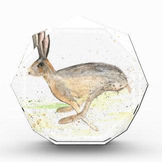 Running hare watercolour award