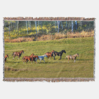 Running Herd of Horses on a BC Ranch Photo 4 Throw Blanket