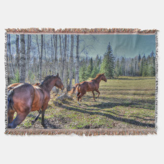 Running Herd of Horses Photo on a BC Ranch 3 Throw Blanket