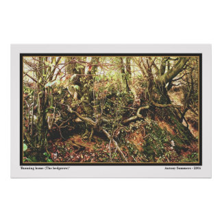 Running Home (The Hedgerow) Poster