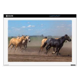 Running Horse Herd Laptop Decal