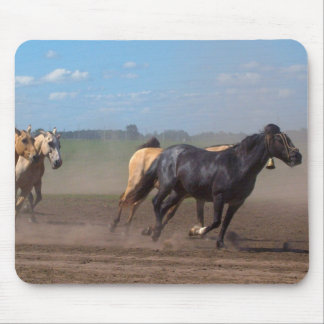 Running Horse Herd Mouse Pad