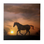 "Running Horse in Sunrise Art Tile<br><div class=""desc"">A great birthday gift or anytime gift for the horse lover,  this art tile features an Appaloosa horse running in the sunrise.  Looks pretty framed or on a box too!</div>"