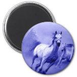 Running Horse Magnets