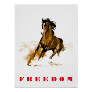Running Horse Motivational Artwork Poster
