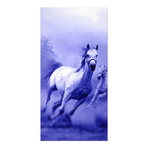 Running Horse Photo Card