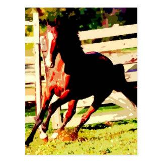 Running Horse Postcard