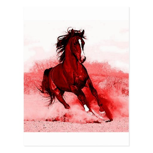 Running Horse Postcards