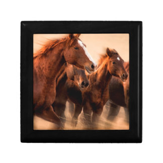 Running horses, blur and flying manes jewelry box