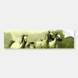Running Horses Bumper Sticker