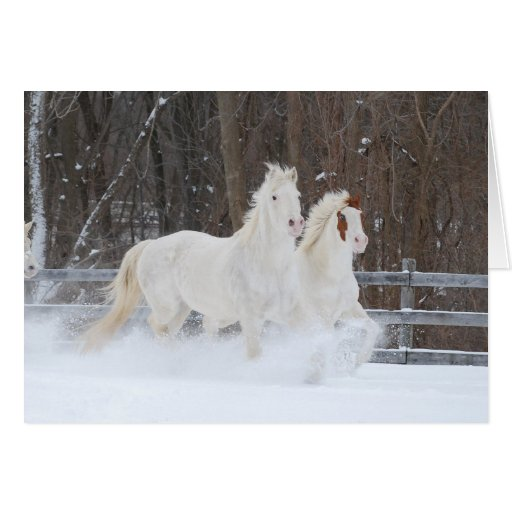 Running Horses Holiday Card Greeting Cards