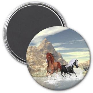 Running horses magnets