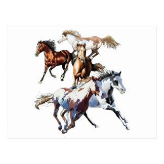 Running Horses Postcard