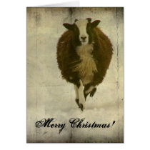 Running Lambchops, Merry Christmas Card