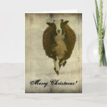 Running Lambchops, Merry Christmas Holiday Card