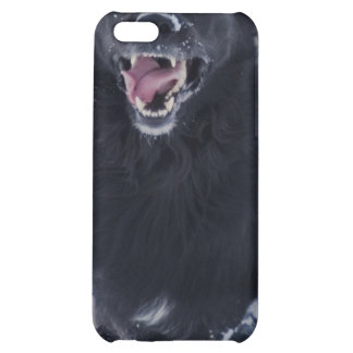 Running Newfoundland Dog iPhone Case Cover For iPhone 5C