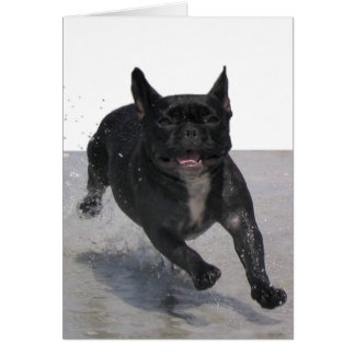 Running on the Beach, Paris Merille Card
