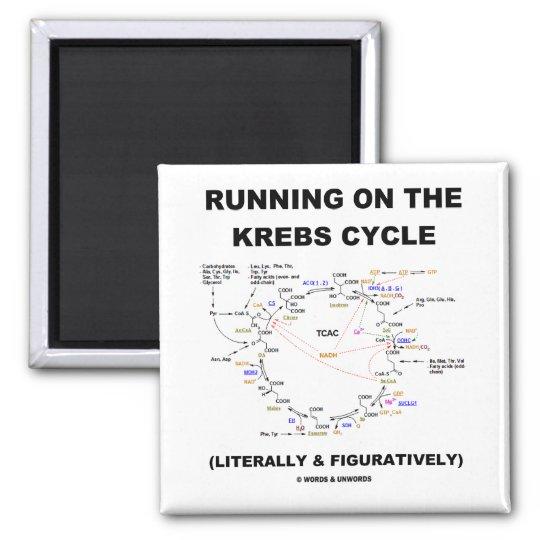 Running On The Krebs Cycle (Science Humor) Magnet