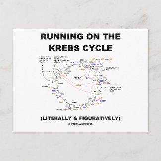 Running On The Krebs Cycle (Science Humor) Postcard