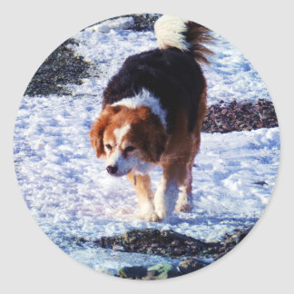 Running On The Snowfield Classic Round Sticker