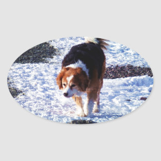 Running On The Snowfield Oval Sticker