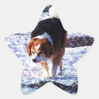 Running On The Snowfield Star Sticker