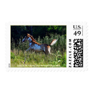 Running Pinto Filly & Field US Postage Stamp