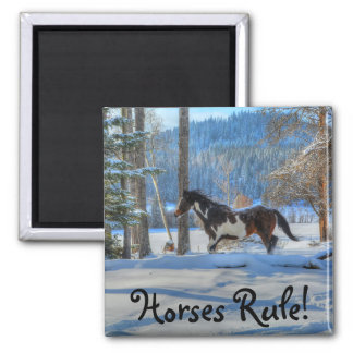 Running Pinto Paint Stallion in Winter Snows Photo Magnet