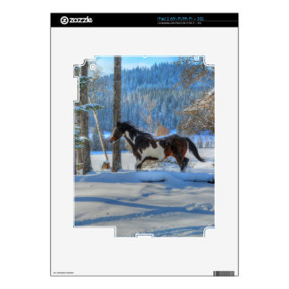 Running Pinto Paint Stallion in Winter Snows Photo Decals For The iPad 2