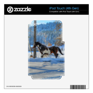 Running Pinto Paint Stallion in Winter Snows Photo iPod Touch 4G Decals