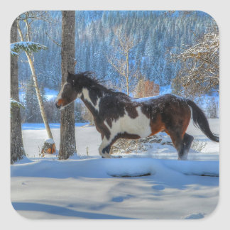 Running Pinto Paint Stallion in Winter Snows Photo Square Sticker